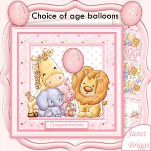 Animal Crew Baby Girl or Birthday Mini Kit with Ages