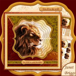 Lion Head Portrait 7.5 Pyramage Mini Kit