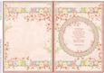 View NEW BABY GIRL INSERT for cup484905_68 Vintage Baby Girl Details