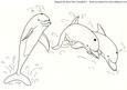 Spirited Dolphins 3-digital Stamps