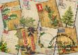 Vintage Airmail Holly Christmas Journaling Cards