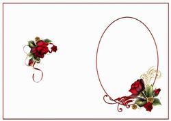 Drama Roses for Anniversary Insert
