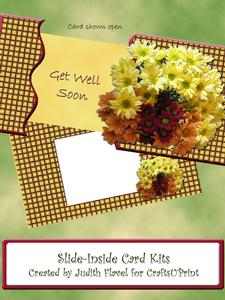 Slide-inside Chrysanthemums