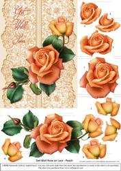 Roses on Lace - Peach on Peach - Get Well