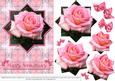 Pink Rose - Star Pyramid & Card Front - Anniversary