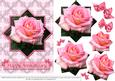 Pink Rose - Star Pyramid & Card Front 2 - Anniversary