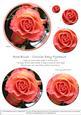 Circular Easy-position Pyramid - Rose Blush