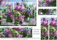 Lilac Time - Card Front with Panels