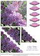 Lilac Time - Corner Stacker