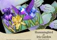 Hummingbird in Iris Garden - Scalloped Easel Card Kit