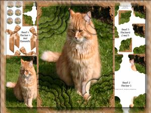 A4 Long Haired Ginger Cat 4 Corner Scallop Stacker Card Kit