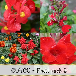 Cu4cu Photo Pack 3