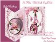 The Pink Rose Ballet Shoes No Holes Fold Mini Kit