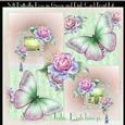 Soft Butterfly Roses in Green and Pinks Card Front with Inse