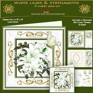 White Lilies & Stephanotis