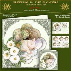 Sleeping Among the Flowers