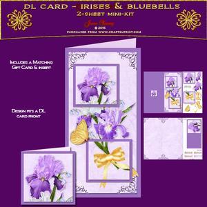 Dl Card - Irises & Bluebells