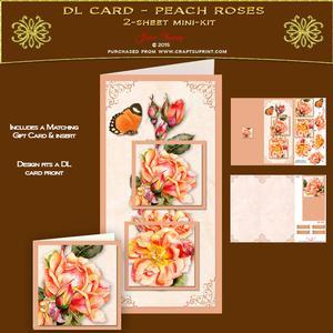 Dl Card - Peach Roses