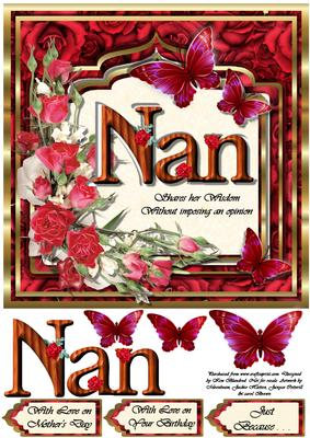 Nan . . . Shares Her Wisdom Without Imposing an Opinion