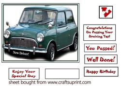 Passed Your Test Mini