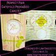 Perfect Pair Gatefold Peekaboo Card Kit