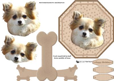 Chihuahua Long Coat Plate Shaped Card Amp Stand Cup205563