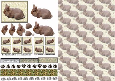 Lion Head Rabbit 3D Decoupage with Background
