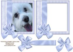 Pup in Blue Frame