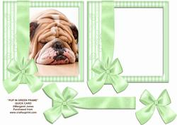 Dog in Green Frame 8x8