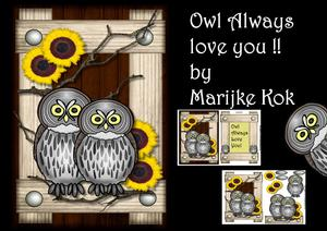 Owl Always Love You Male Card