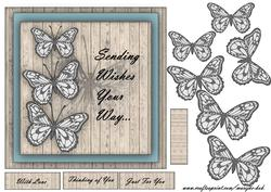 Butterfly Wishes -