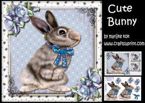 Cute Bunny Mini Kit