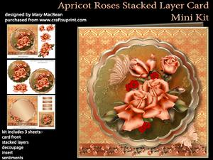 Apricot Roses Stacked Layer Card Mini Kit