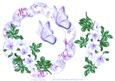 Wild Roses and Butterfly Frame Lilac