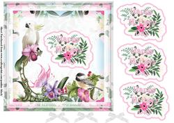Tropical Birds Mothers Day Pink