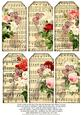 Music Sheets Redoute Florals Violins
