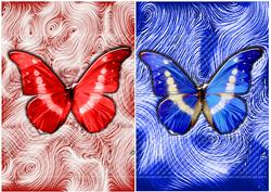 Butterfys