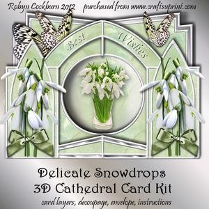 Delicate Snowdrops 3D Cathedral Card Kit