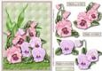 Pansy Garden Step by Step