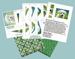 Labrador Puppy Iris Folding Kit