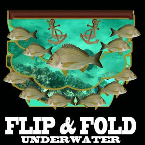 Fold and Flip Underwater Fishes Multiple Uses for This Card