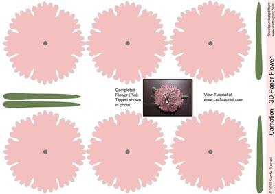 Pink Carnation - 3D Paper Flower
