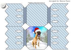 Blue Christmas Boxer Cracker Shaped Card
