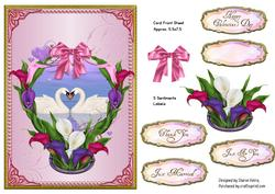 Swan Love Card Front