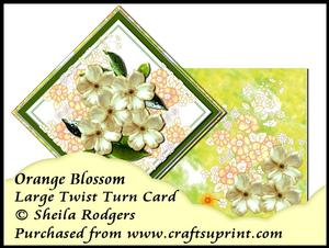 Large Twist Turn Card - Orange Blossom