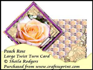 Large Twist Turn Card - Peach Rose