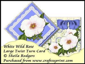 Large Twist Turn Card - White Wild Rose