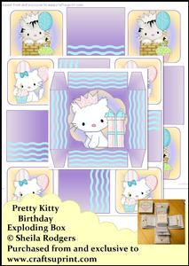 Exploding Box - Pretty Kitty Birthday