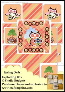 Exploding Box - Spring Owls