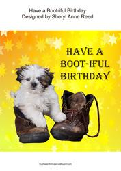 Have a Boot-iful Birthday (1)